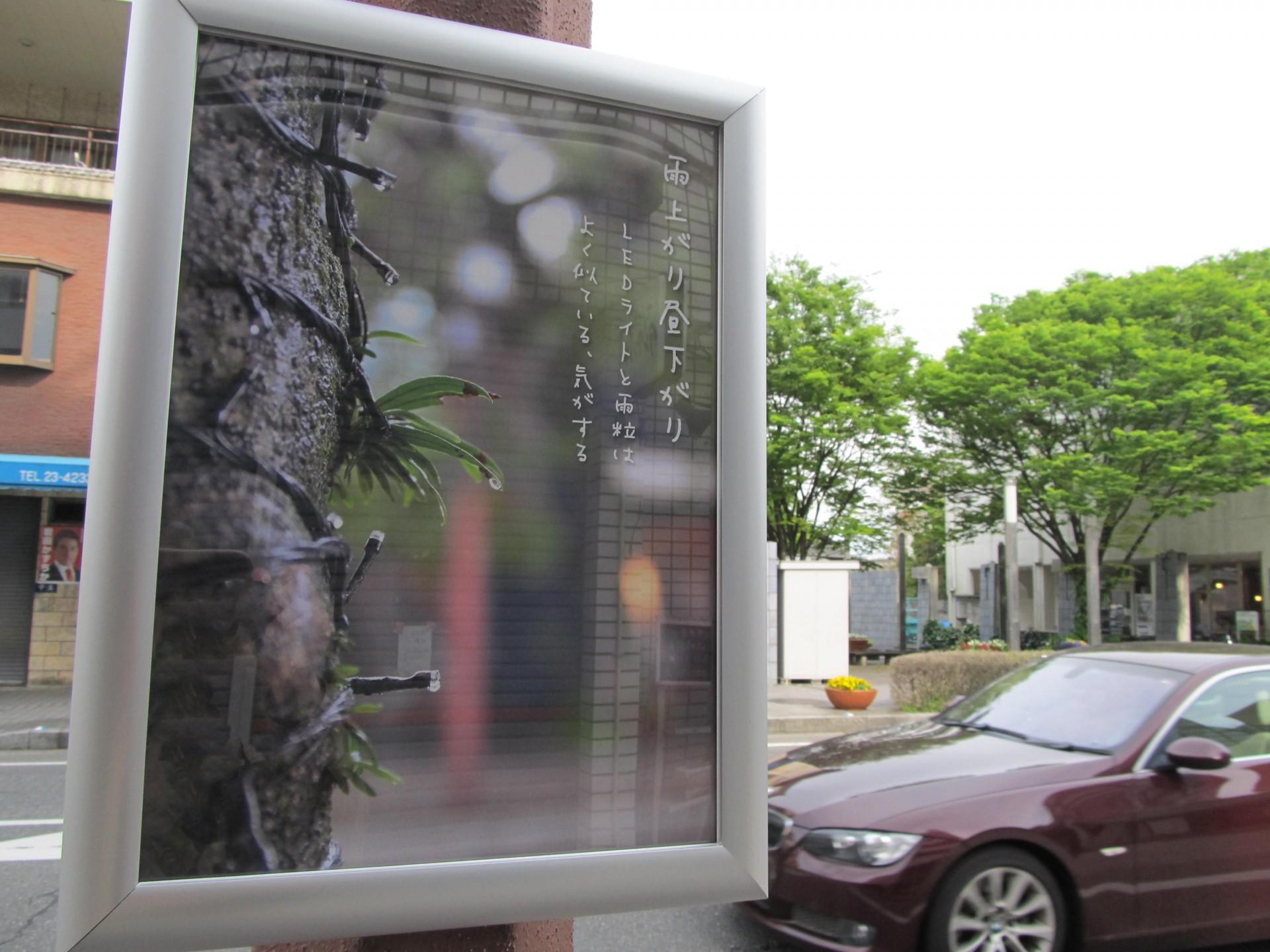 ▲昨年12月、街歩きと撮影会を兼ねたワークショップを開催。  市民の目線で撮影された写真がキャッチコピー付の作品に。