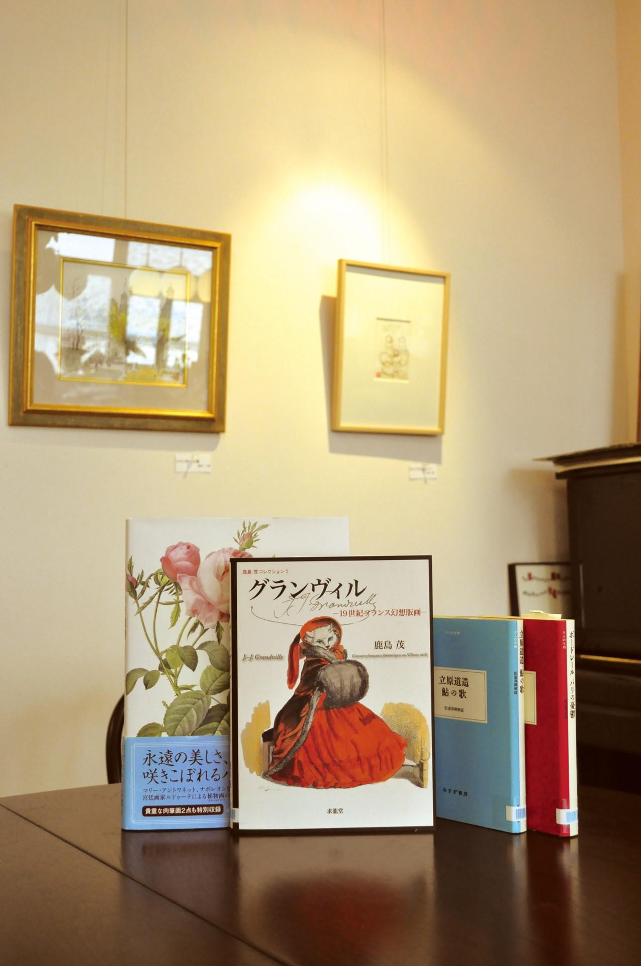 この店の街としょ本棚のテーマは「フランス」