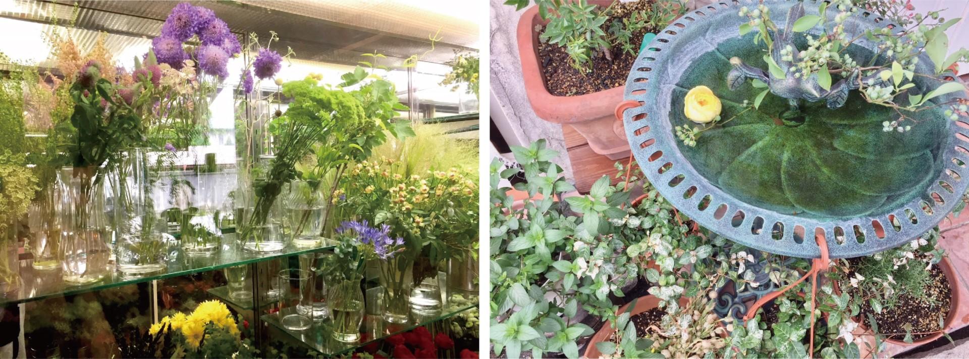 (左)瑞々しい生花が彩るガラスケース(右)アプローチのウェルカムフラワー