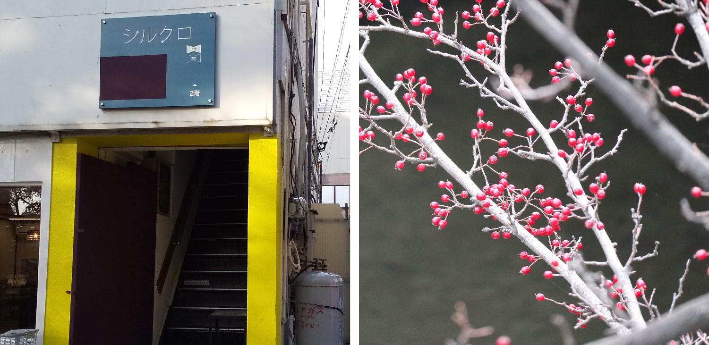 (左)ギャラリーシルクロさんの入り口が黄色に! (右)冬は赤い色が映えますね