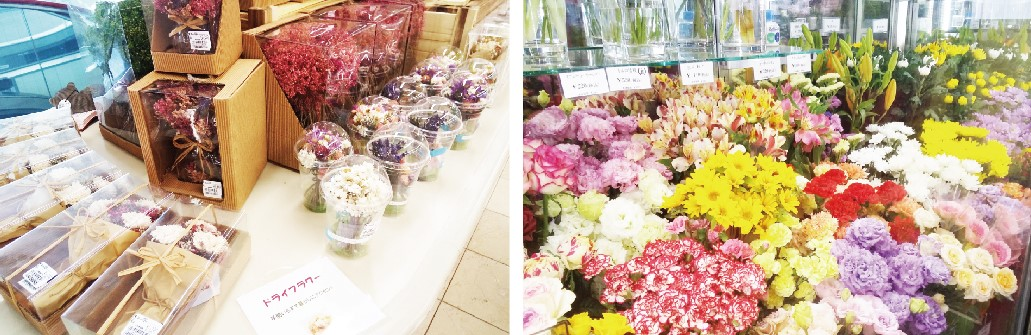 (左)ドライフラワー (右)色鮮やかな生花の数々